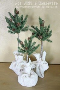 Pine Tree Topiaries {Guest Post}