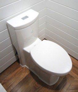 Toilet talk:  installation of a one piece wonder