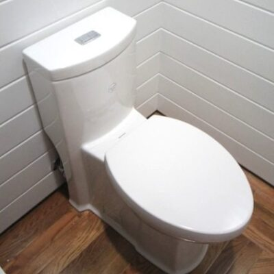 How to Change a Toilet – One Piece Toilet