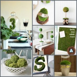 8 awesome ideas for decorating with Moss