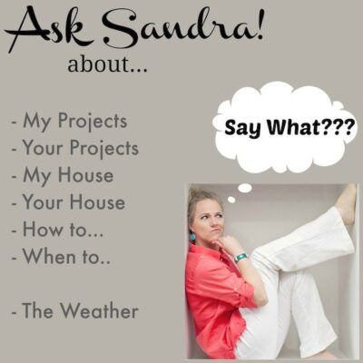 Ask Sandra- some YOU-Tube fun