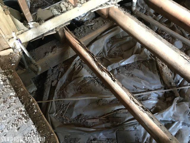 termite damage to floor joists